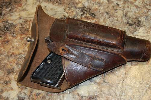 Mystery Holster? Does the shoe fit?