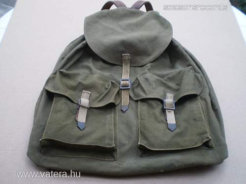 Back-pack - what kind?