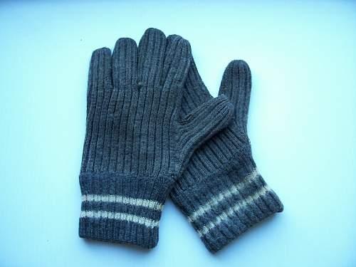 Gloves WH or DDR Volksarmee?