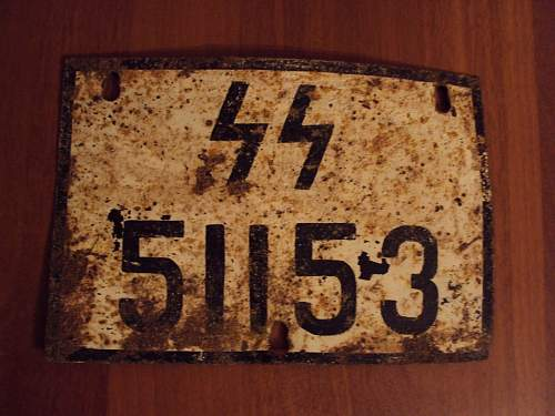 SS vehicle license plate