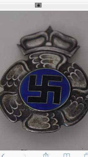 finnish pilot badge