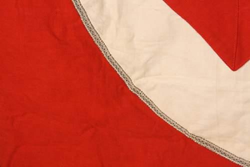 Womans assocation league district flag
