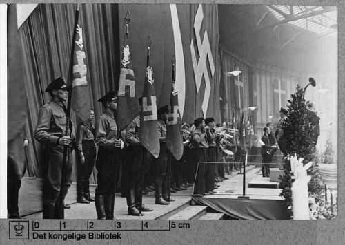danish nazi flag and pole