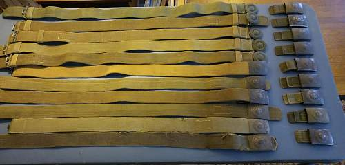 Tropical Belt for review