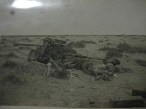 Rats of tobruk in captured afrika korp uniforms 1941