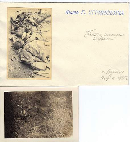 Click image for larger version.  Name:dead germans and serbian pics.jpg Views:447 Size:245.2 KB ID:176156