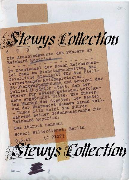 Click image for larger version.  Name:Stewy_11.jpg Views:343 Size:88.9 KB ID:18089
