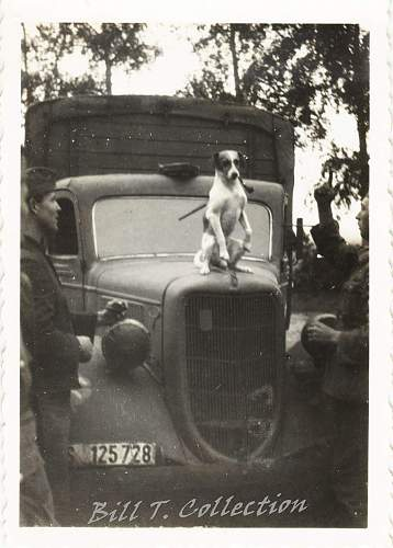 Click image for larger version.  Name:dog w cigar 001_final.jpg Views:274 Size:211.3 KB ID:181805