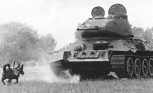 Click image for larger version.  Name:anti-tank_dog_mine_001_629x383.jpg Views:188 Size:44.3 KB ID:181855