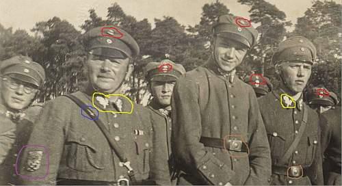 Click image for larger version.  Name:stahlhelm cap badgee 001pnt.jpg Views:2199 Size:108.2 KB ID:188386