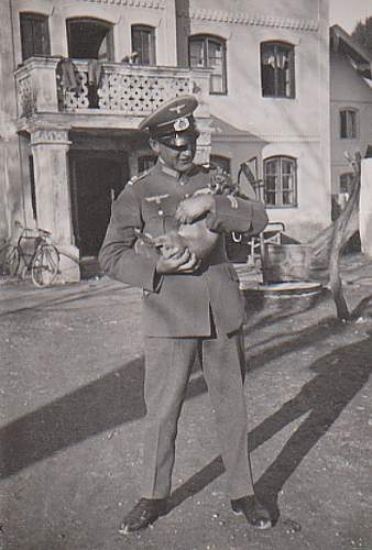 Click image for larger version.  Name:Kampfhund.jpg Views:96 Size:76.2 KB ID:190492