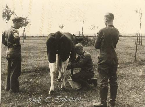 Click image for larger version.  Name:army milkin cow 001_final.jpg Views:128 Size:228.4 KB ID:197701