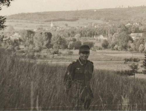 Click image for larger version.  Name:gebs in field 001.jpg Views:129 Size:63.6 KB ID:198197