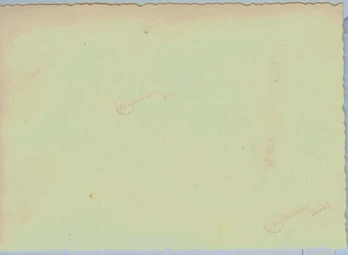 Click image for larger version.  Name:fake mimosa 001.jpg Views:48 Size:225.6 KB ID:203939