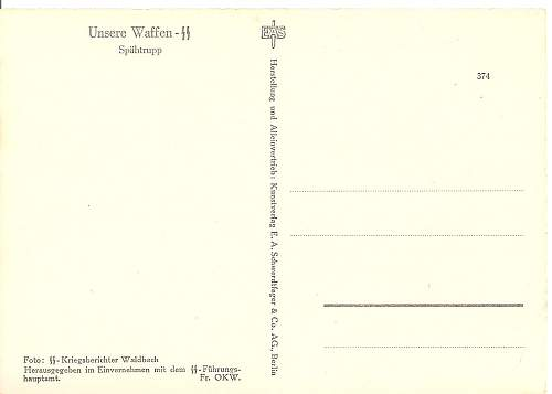 SS Postcard