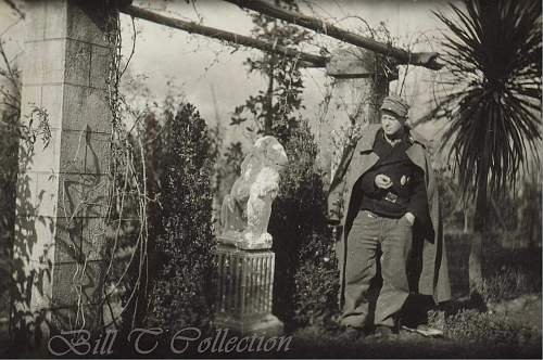 Click image for larger version.  Name:Panzerman w lion statue_final.jpg Views:110 Size:234.3 KB ID:216786