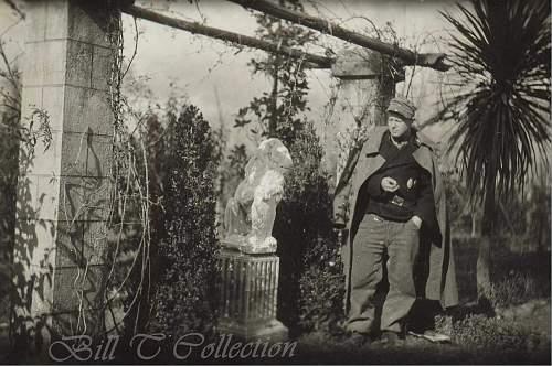 Click image for larger version.  Name:Panzerman w lion statue_final.jpg Views:100 Size:234.3 KB ID:216786