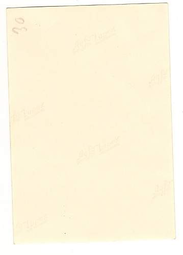 Click image for larger version.  Name:WW2 nude reverse.jpg Views:264 Size:50.8 KB ID:218847