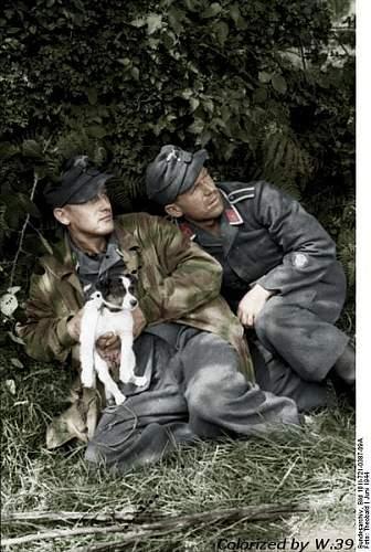 Click image for larger version.  Name:403px-Bundesarchiv_Bild_101I-721-0387-09A,_Frankreich,_Luftwaffensoldaten_mit_Hund - Copy - Copy.jpg Views:114 Size:73.0 KB ID:235277
