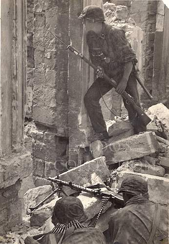 Waffen SS Postcards