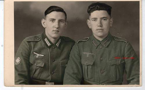 Post your colorized pictures!