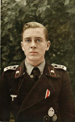 Click image for larger version.  Name:Panzer Fahnenjunker Feld Deiter Jahncolor.jpg Views:551 Size:102.2 KB ID:258517