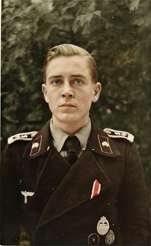 Click image for larger version.  Name:Panzer Fahnenjunker Feld Deiter Jahncolor.jpg Views:351 Size:102.2 KB ID:258517