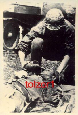 Experience with Tolzor1 on Ebay?