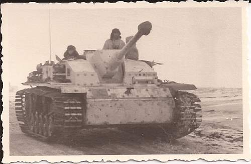 Click image for larger version.  Name:panzerpiture9.jpg Views:83 Size:199.5 KB ID:306553