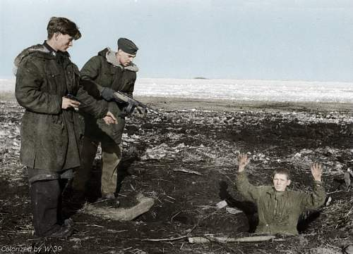 Click image for larger version.  Name:Waffen-SS533 - Copy - Copy.jpg Views:160 Size:89.1 KB ID:313626