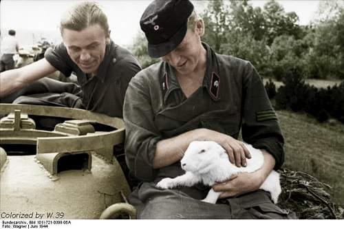 Click image for larger version.  Name:Bundesarchiv_Bild_101I-721-0398-06A,_Frankreich,_Panzersoldaten_mit_Hase - Copy - Copy.jpg Views:128 Size:71.1 KB ID:313630