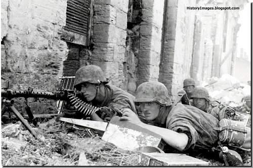 Click image for larger version.  Name:waffen-SS-Liebstandarte-battle-Kherson.jpg Views:8097 Size:79.8 KB ID:402610