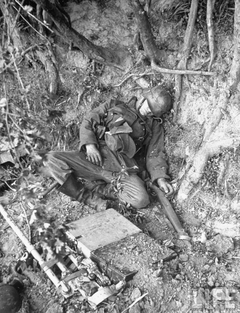 Corpses Deutsch
