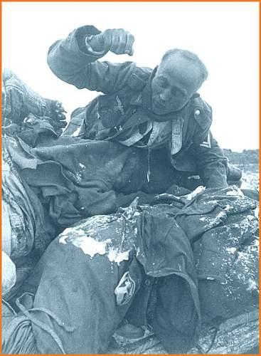Click image for larger version.  Name:stalingrad_dead_german_invaders3a.jpg Views:416 Size:75.2 KB ID:40969