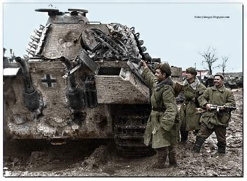 Click image for larger version.  Name:ukraine-ww2-1943-44-german-tank-tiger-captured-soviet-soldiers-march-13-1944 copy.jpg Views:2316 Size:53.4 KB ID:418480