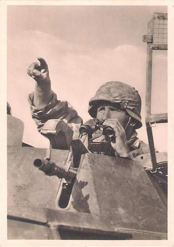 Click image for larger version.  Name:Unsere Waffen-SS 006 A.JPG Views:189 Size:56.4 KB ID:421303