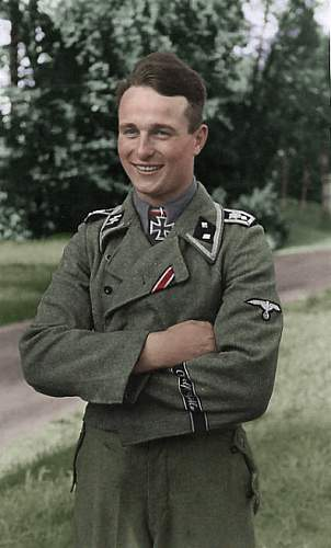 Click image for larger version.  Name:WaffenSS1.jpg Views:61 Size:29.3 KB ID:509842