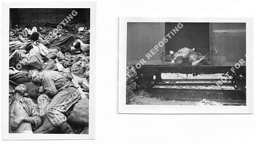 Are these Concentration Camp photos of Dachau?...
