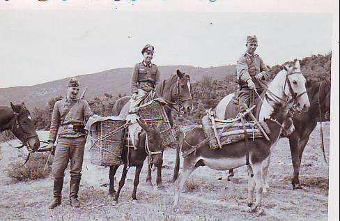 Heer soldiers with horses & mules