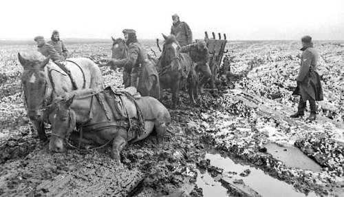 Click image for larger version.  Name:wwii+horses.jpg Views:1190 Size:50.7 KB ID:682219