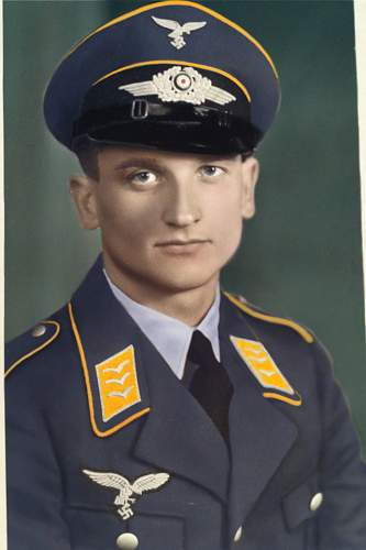 Click image for larger version.  Name:luft_soldier.jpg Views:38 Size:193.6 KB ID:740732