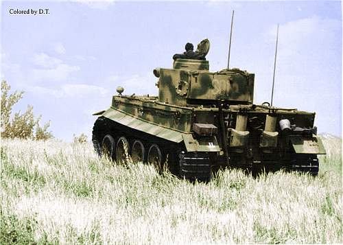 Click image for larger version.  Name:Tiger tank into field signo 800x600.jpg Views:175 Size:58.0 KB ID:787794