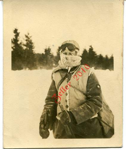 Click image for larger version.  Name:interesting snow suit_demo.jpg Views:249 Size:138.7 KB ID:95506