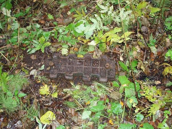 Click image for larger version.  Name:Narva October 2008 ( 2) 014.jpg Views:87 Size:273.7 KB ID:18145