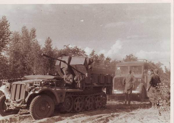 Half-track with flak cannon in Russia
