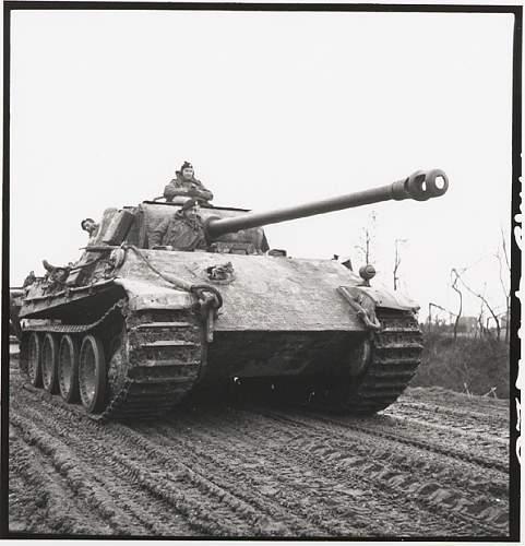 Click image for larger version.  Name:german_panther_tank.jpg Views:4586 Size:128.0 KB ID:64046