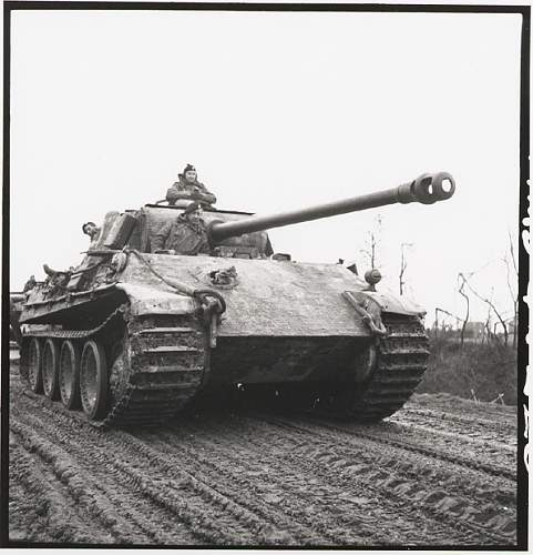 Click image for larger version.  Name:german_panther_tank.jpg Views:3493 Size:128.0 KB ID:65313