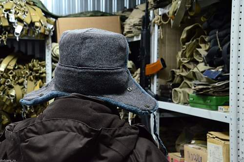 Ushanka supposed to look like this?