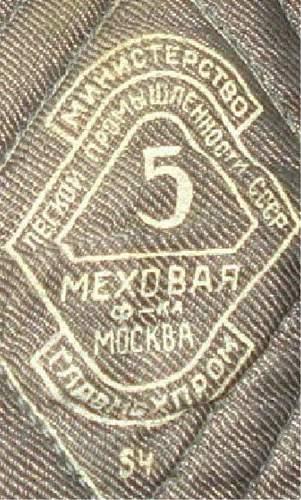 An older ushanka for review