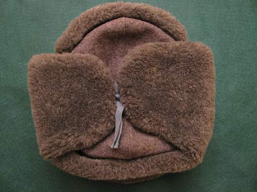Click image for larger version.  Name:Russian ushanka 077.jpg Views:571 Size:255.3 KB ID:200949